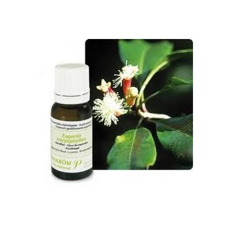 Giroflier clou bio Huile essentielle 10ml - Aromathérapie Pranarom