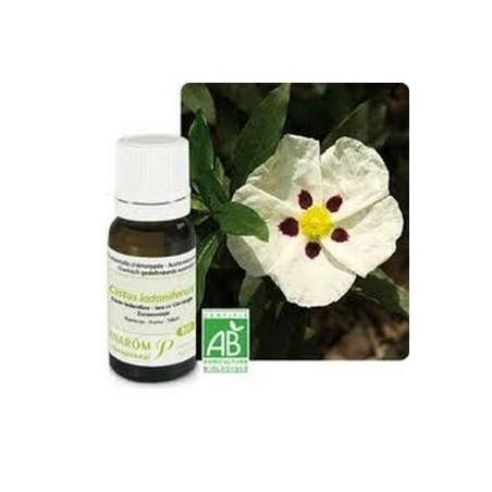 Aceite esencial orgánico de cistus ladanífero 5ml - Aromathérapie Pranarom