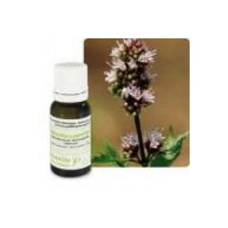 Menthe poivrée bio huile essentielle bio 10ml - Aromathérapie Pranarom